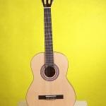 Khi mới học đàn guitar nên mua đàn guitar acoustic hay guitar classic?