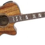 Hướng dẫn cách đệm hát Guitar dòng nhạc Ballad