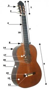 acoustic_guitar_parts