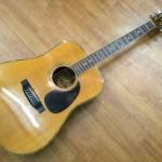 Các Loại Đàn Guitar Acoustic Morris Thông Dụng Hiện Nay