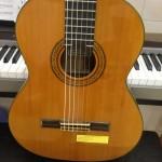 Mua Đàn Guitar Acoustic Ở TPHCM