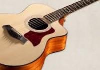 Sự kết hợp giữa các loại gỗ vào đàn Guitar